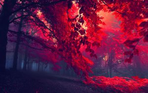 blood-red-forest-wide
